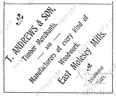 Andrews Advertisement